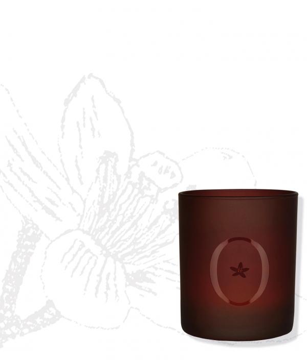 Bougie L'Orangeraie en Fleur