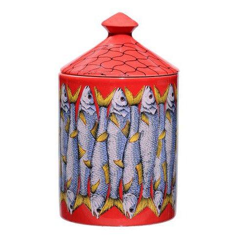 sardines - bougie 300 g